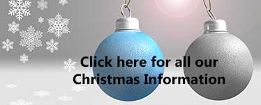 christmas-offer-image
